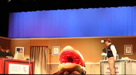 Little Shop of Horrors takes over Lambert
