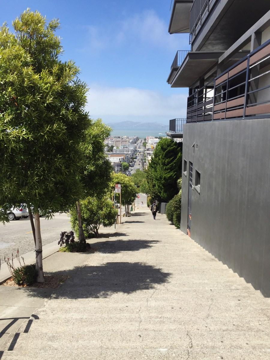 Eco city guide: San Francisco