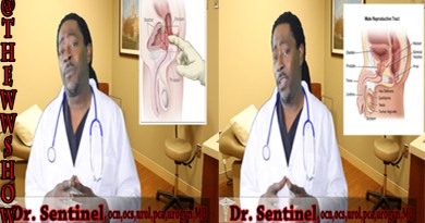 Prostate Cancer by Dr. Sentinel