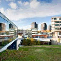 Studying Translation at the University of Essex
