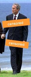 bush-topless-censored.jpg