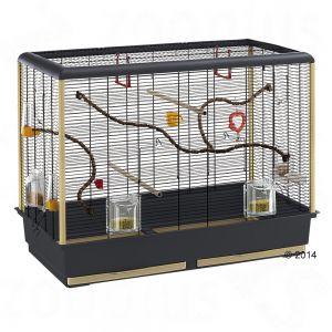 cage ferplast piano 6 - Minimum habitat dimensions for Psittacidae
