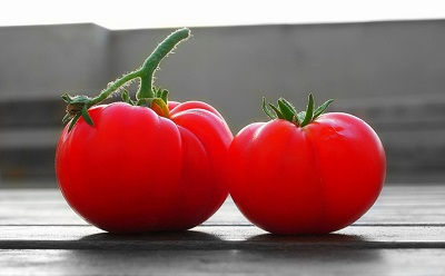 Tomate aliments toxiques