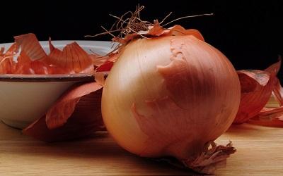 oignon aliments toxiques