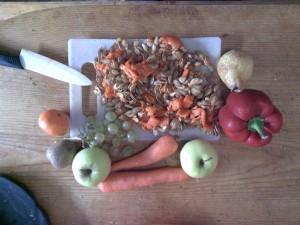 Alimentation des perruches et perroquets: fruits et légumes pour perruche