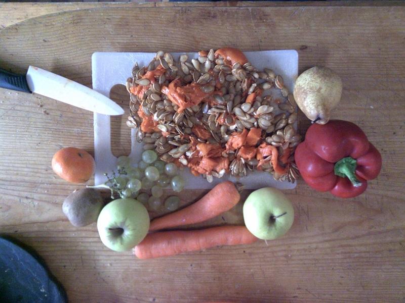 fruits et légumes pour perruche