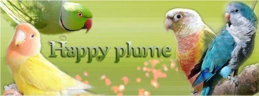happy plume partenaire