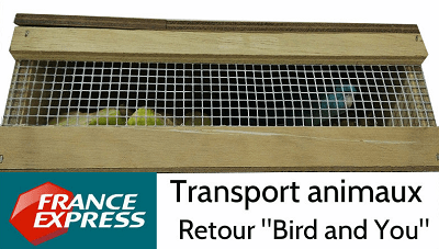 Transport d'animaux vivants-France express