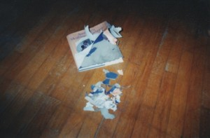REIGN OF TERRIER--My dog ate my cookbook!