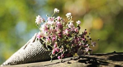 Ein selbstgepflückter Strauß Blumen zum Muttertag