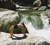 Wendy Green yoga