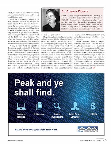 the yale law journal forum the punishment bureaucracy - 362×470