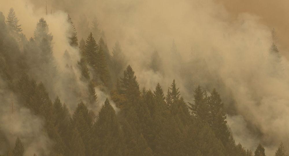«Беспрецедентное поведение при пожарах», когда в Калифорнии разрастаются пожары, угрожающие крупным городам