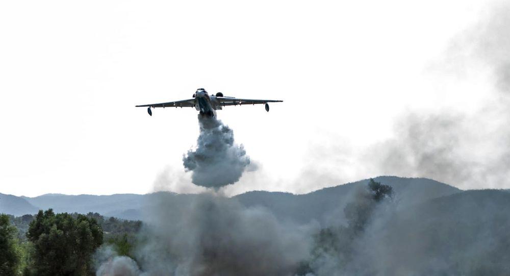 Путин и Эрдоган обменялись соболезнованиями в связи с крушением российского самолета Бе-200 в Турции