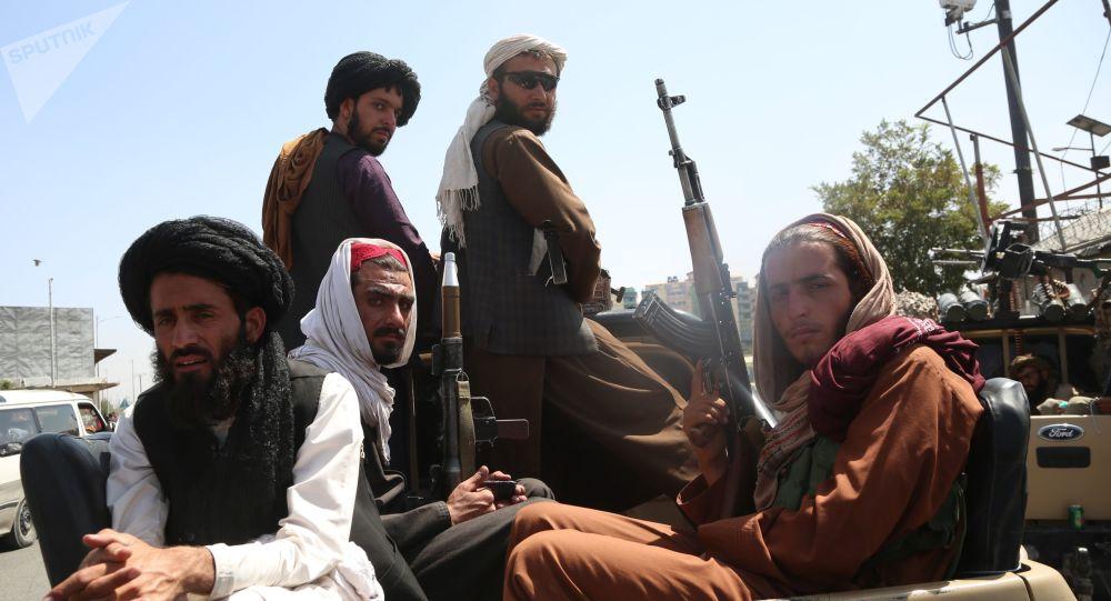 У Пакистана нет денег, чтобы «контролировать» Талибан, говорит брат беглого президента Афганистана