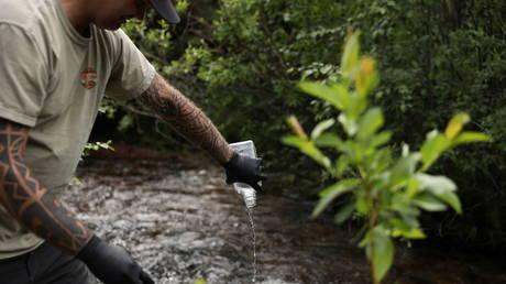 Исследователи заявляют, что леса стали чистыми источниками выбросов углерода, обвиняя деятельность человека и изменение климата в исследовании объектов ЮНЕСКО