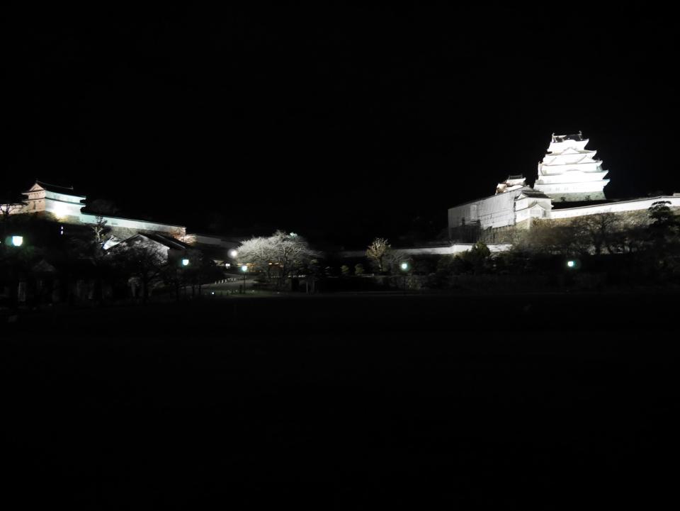 Le château de Himeji de nuit