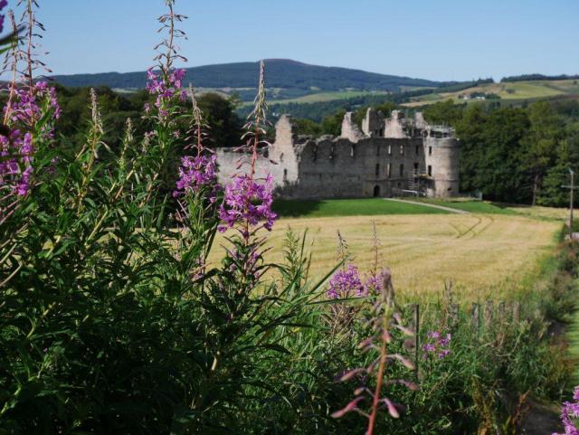 Le château de Balvenie