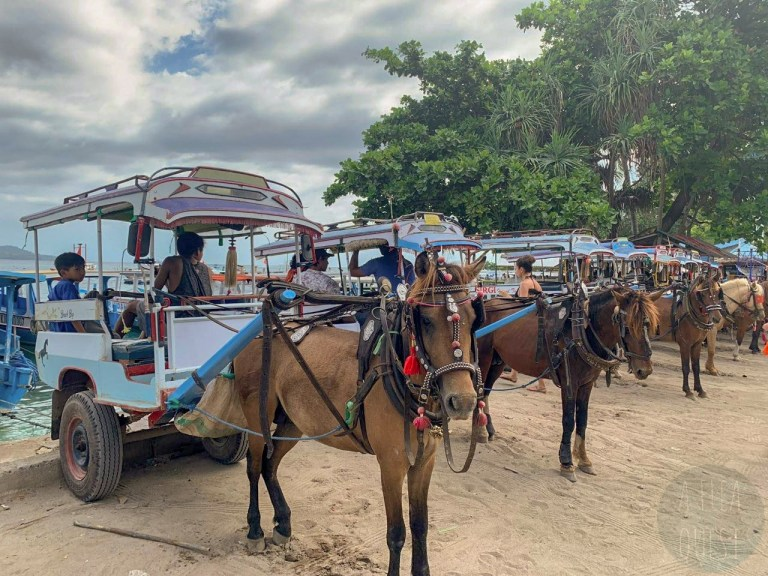 Horse carts at Gili T, by Aurélie, enhanced by me