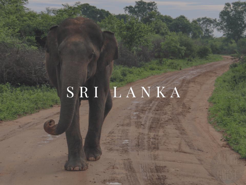 Sri Lanka AFQ