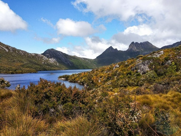 A view of the Cradle Mountains