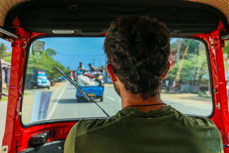 Dante qui conduit avec en fond ceux d'une photo précédente