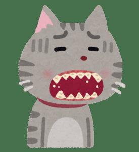 朝の口臭の原因