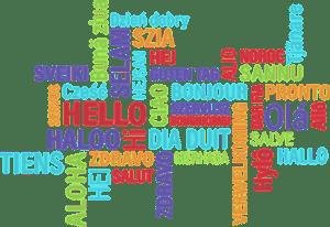 langage faire de la voile langue