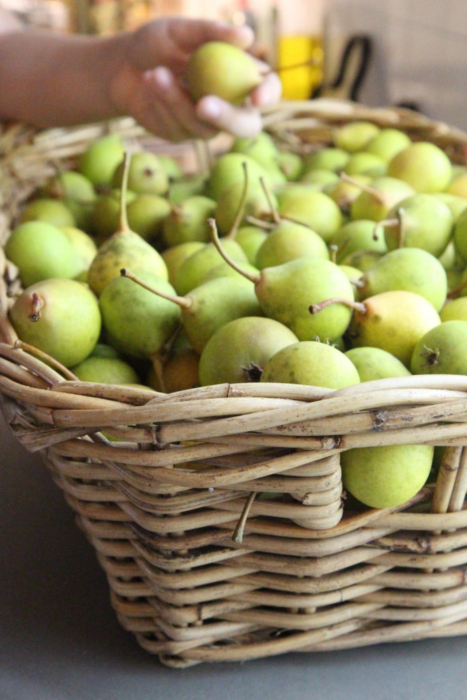 Päärynöitä, päärynöitä