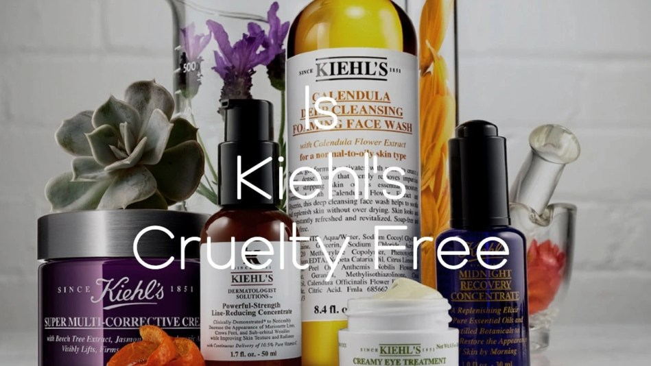 Is Kiehls Cruelty Free - A-Lifestyle