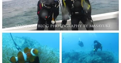 沖縄貸切ダイビング|ボート|山田ポイント