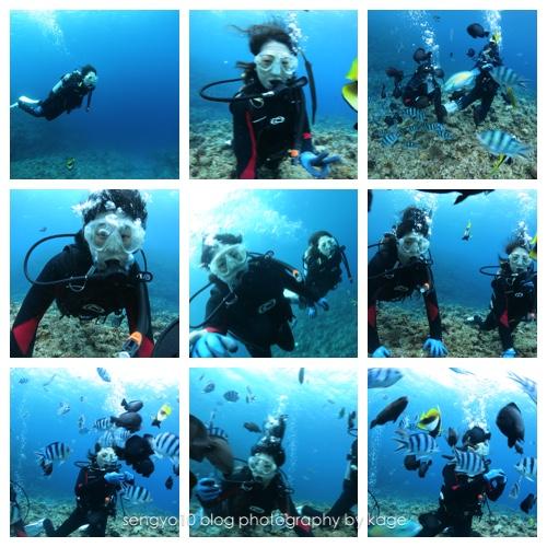 2017年1月体験ダイビング沖縄