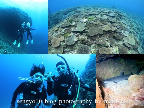 沖縄ダイビング|恩納村|オーバーヘッド|サンゴ礁