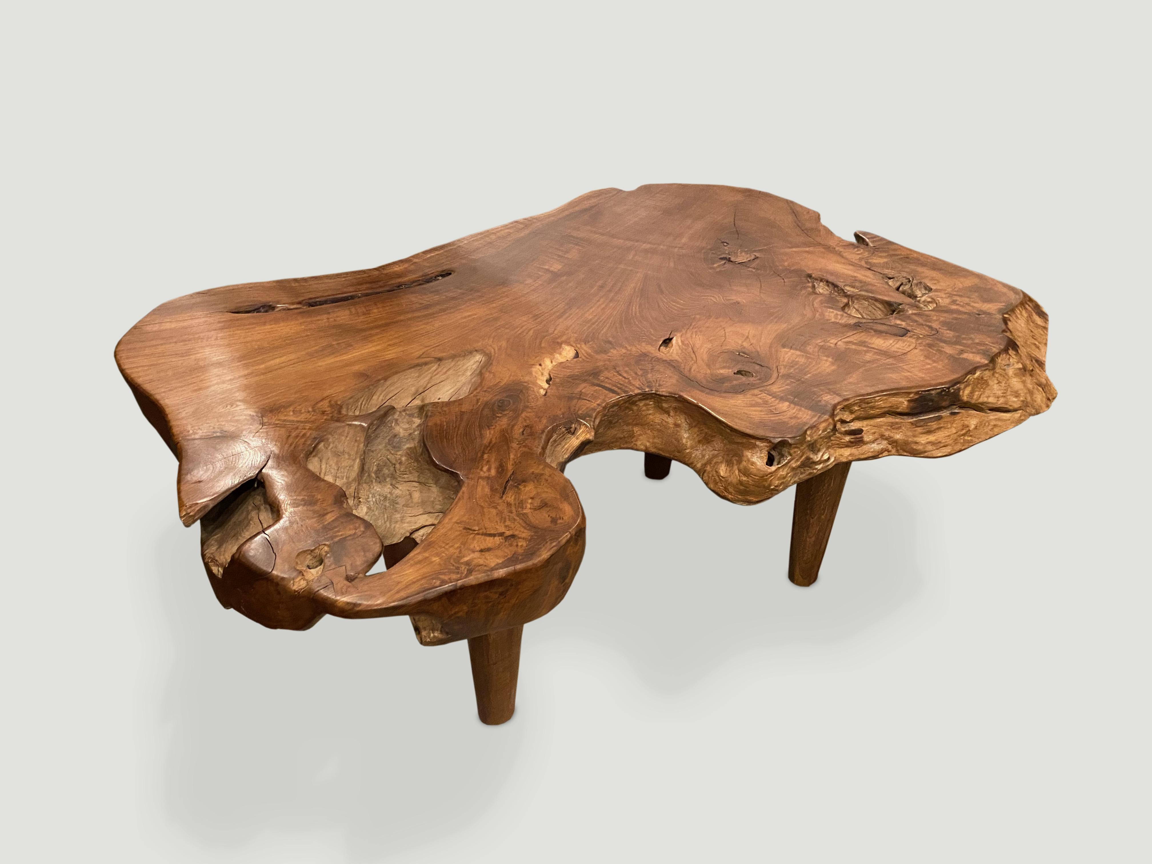 andrianna shamaris single slab live edge teak wood coffee table