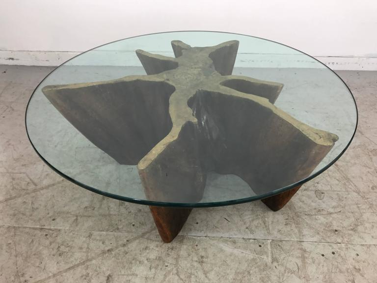unusual organic cyprus root and glass coffee table