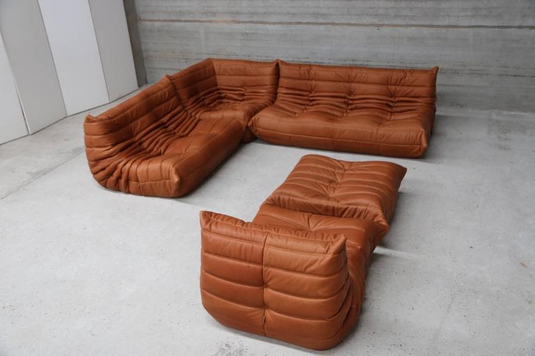 set by michel ducaroy for ligne roset we specialize in reupholstering a label sofas