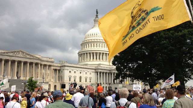 PHOTO: Tea Party activists listen to Rep. Steve King (R-Iowa) speak at an anti-immigration reform rally outside the U.S. Capitol on June 19, 2013