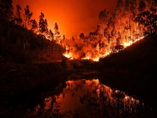 PHOTO: A wildfire is reflected in a stream at Penela, Coimbra, central Portugal, on June 18, 2017.