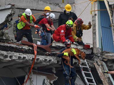 Over 230 dead in Mexico quake as rescuers desperately ...