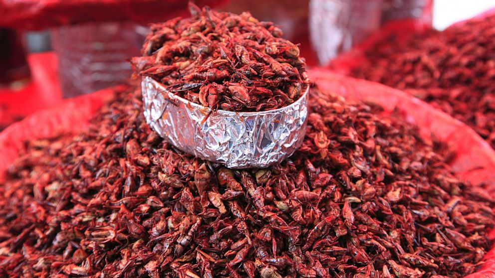 PHOTO: Grasshoppers at a market near Oaxaca, Mex.