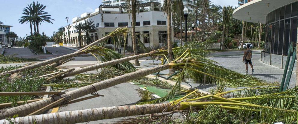 Image result for photos of hurricane irma in florida
