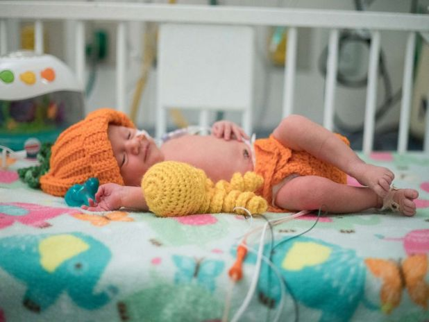 PHOTO: One of the NICU patients, Angela, is dressed up in one of Fankhausers knitted costumes as a pumpkin.