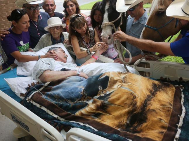 PHOTO: Vietnam War vet Roberto Gonzalezs last request, to see his beloved horses once more, was fulfilled at the Audie L. Murphy Memorial Veterans Hospital in San Antonio.