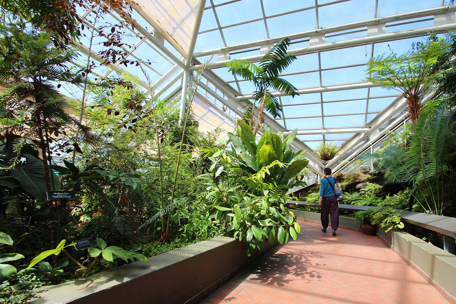 Updated 03/22/20 lightphoto / getty images founded in 1910, the brooklyn botanic garden is. Brooklyn Botanic Garden In New York Explore 52 Acres Of Flora Heaven In Brooklyn Go Guides