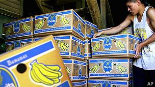Cajas de bananas
