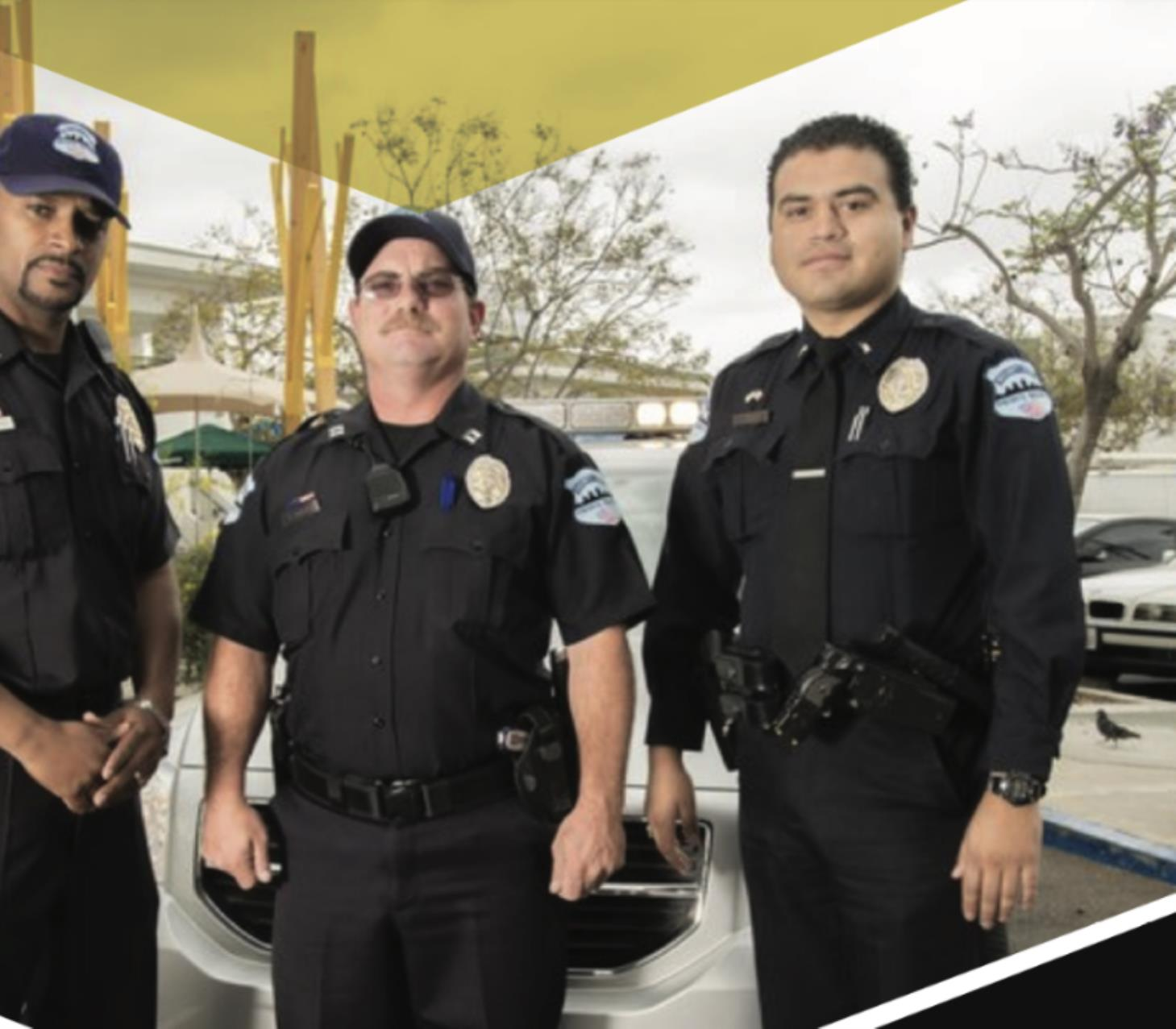 Executive Protection Team