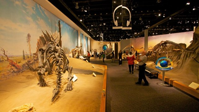 Drumheller Pictures: View Photos & Images of Drumheller