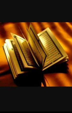 Quraan The Book Of Allah No Fear No Grief Wattpad