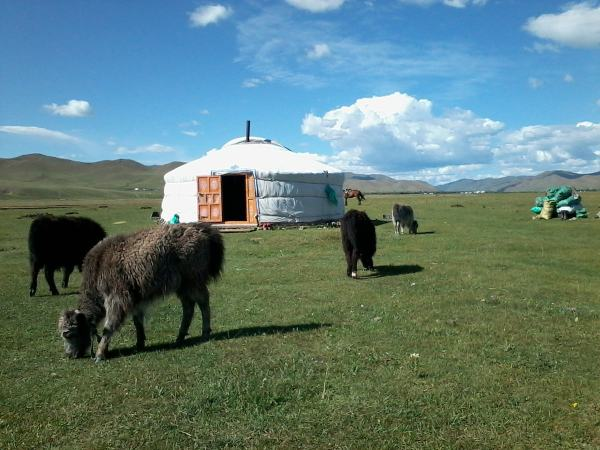 A ger in the Mongolian countryside