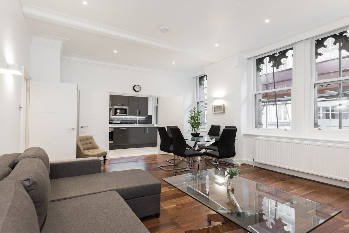 Beautiful Apartment In The Heart Of London FS1 Apartments For Rent In London England